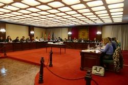 Pleno Municipal Sello de Accesibilidad